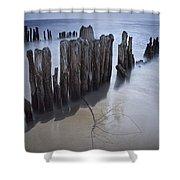 Pilings On The Beach Along A Lake Michigan Shore Shower Curtain