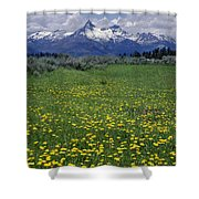 1a9210-pilot Peak And Wildflowers Shower Curtain
