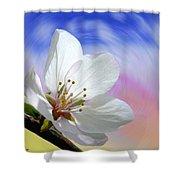 Pin Cherry Swirl Shower Curtain