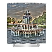 Color Filled Pineapple Shower Curtain