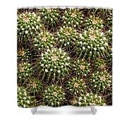 Pincushion Cactus Shower Curtain