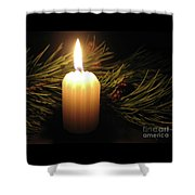 Pine Bough And Candle Shower Curtain