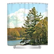 Pine By The Water Shower Curtain