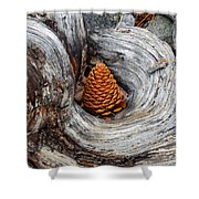 Pine Cone In A Knot  Shower Curtain