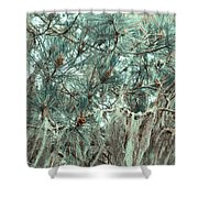 Pine Cones And Lace Lichen Shower Curtain