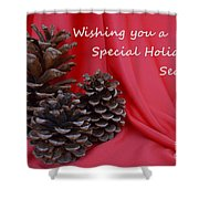 Pine Cones For The Holidays Shower Curtain