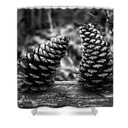 Pine Cones Talking  Shower Curtain