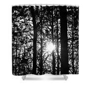 Pine Grove I Shower Curtain