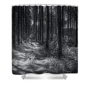 Pine Grove Shower Curtain