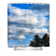 Pine Isand Shower Curtain