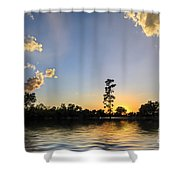 Pine Tree At Sunset Shower Curtain