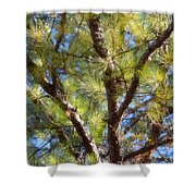 Pine Tree Glow 2014 Shower Curtain
