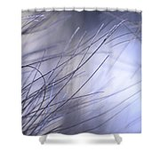 Pine Tree Needles 1 Shower Curtain
