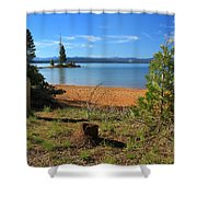 Pine Trees In Lake Almanor Shower Curtain