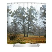 Pine Trees In Mist - Digital Paint 1 Shower Curtain