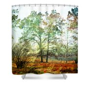 Pine Trees In Mist 2 - Digital Paint Shower Curtain