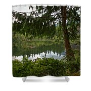 Pine Trees Over Starvation Lake Shower Curtain