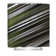 Pine Woods Sweep Shower Curtain