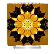 Pineal Breakthrough Shower Curtain