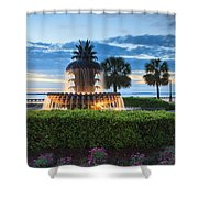 Pineapple Fountain Charleston South Carolina Sc Shower Curtain