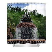 Pineapple Fountain Shower Curtain by Skip Willits