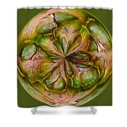 Pineapple Orb Shower Curtain
