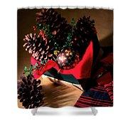 Pinecones Christmasbox Shower Curtain