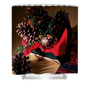 Pinecones Christmasbox Painted Shower Curtain
