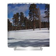 Pinetop Snowfall Shower Curtain