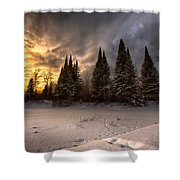 Pinewood River Shower Curtain