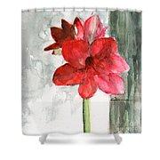 Pink Amaryllis Shower Curtain