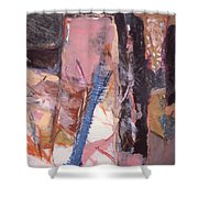 Pink And Black Shower Curtain