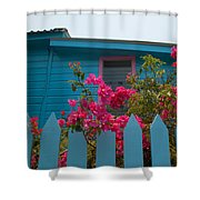 Pink And Blue House Shower Curtain
