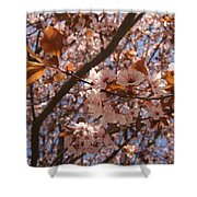 Pink And Leaves Shower Curtain