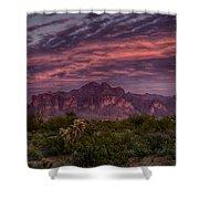 Pink And Purple Desert Skies  Shower Curtain