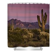 Pink And Purple Skies  Shower Curtain