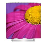 Pink And Purple Smile Shower Curtain