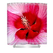 Pink And Red Hibiscus Flower Shower Curtain