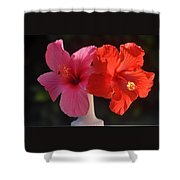 Pink And Red Hibiscus Shower Curtain