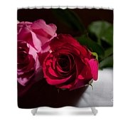 Pink And Red Rose Shower Curtain