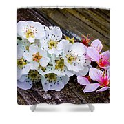 Pink And White 2 Shower Curtain