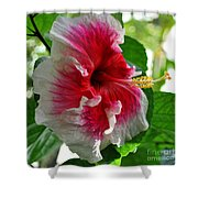 Pink And White Hibiscus Shower Curtain