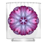 Pink And White Impatiens I Flower Mandala White Shower Curtain