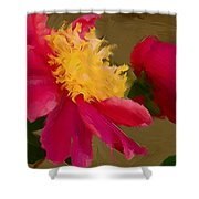 Pink And Yellow Au Deux Shower Curtain