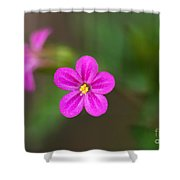 Pink And Yellow Flowers With Green Blurry Background Shower Curtain