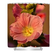 Pink And Yellow Hollyhock Shower Curtain