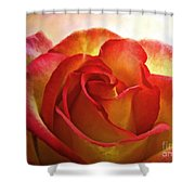 Pink And Yellow Rose - Digital Paint Shower Curtain