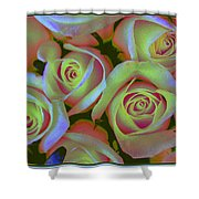 Pink And Yellow Roses Pop Art Shower Curtain