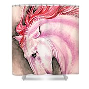 Pink Andalusian Shower Curtain