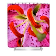 Pink Aroma  Shower Curtain